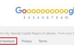 google-hoax